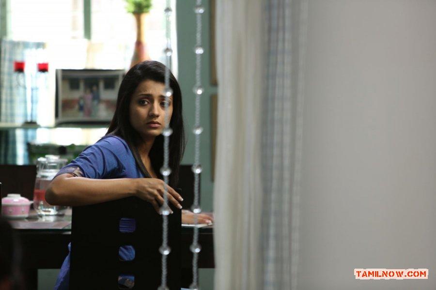 Trisha Krishnan Photos 5544