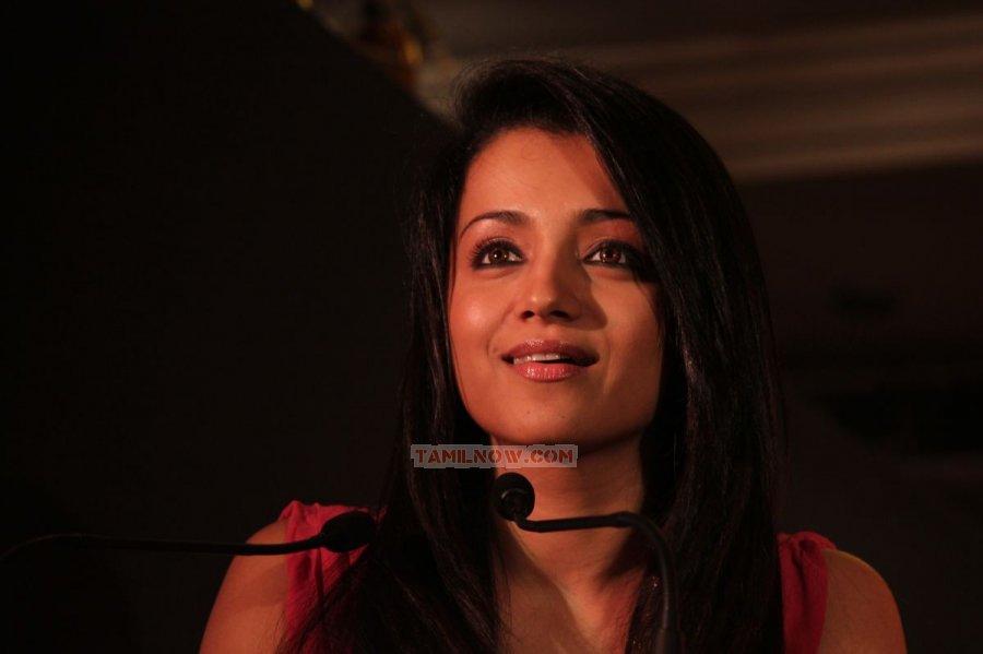 Trisha Krishnan Photos 8413