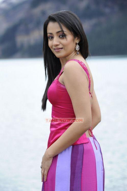 Trisha Krishnan Photos 8544