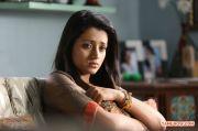 Trisha Krishnan Photos 922