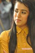 Trisha Krishnan Recent Images 8127