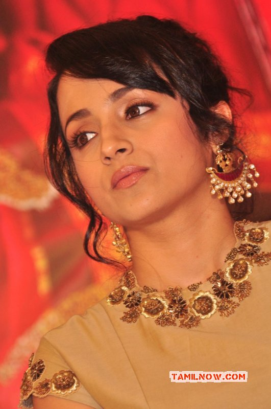 Trisha Krishnan South Actress 2015 Wallpaper 2105