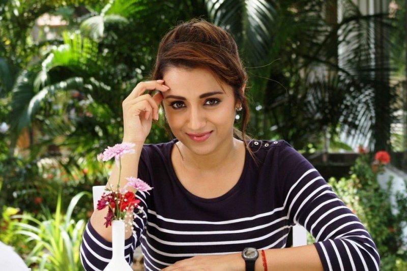 Trisha Krishnan South Actress Aug 2019 Albums 8241