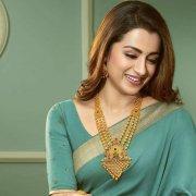 Trisha Krishnan South Actress Latest Pictures 7256