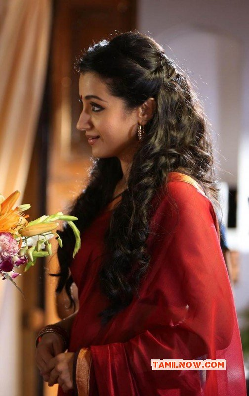 Trisha Krishnan South Actress May 2015 Pic 2540