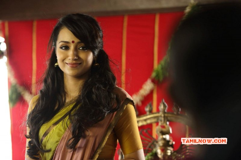 Trisha Krishnan South Actress New Picture 8631
