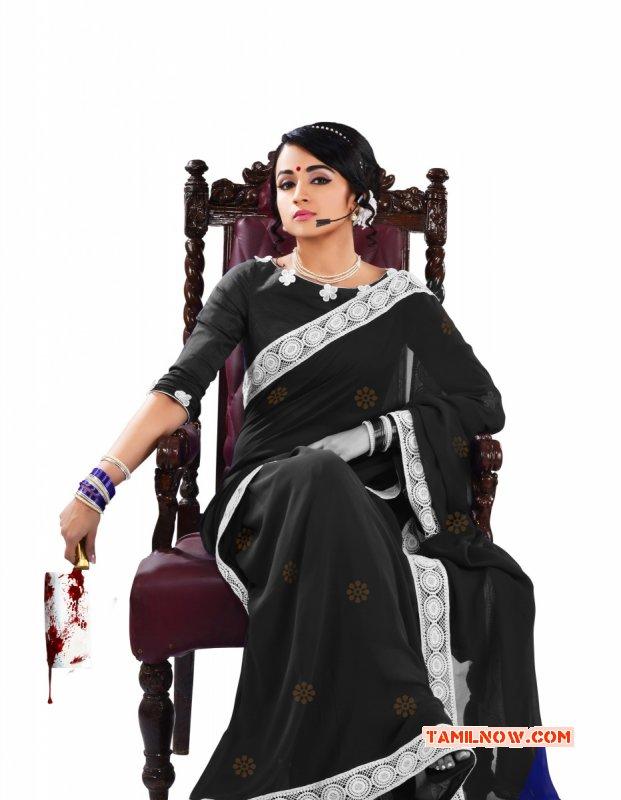 Trisha Krishnan South Actress Photo 8474