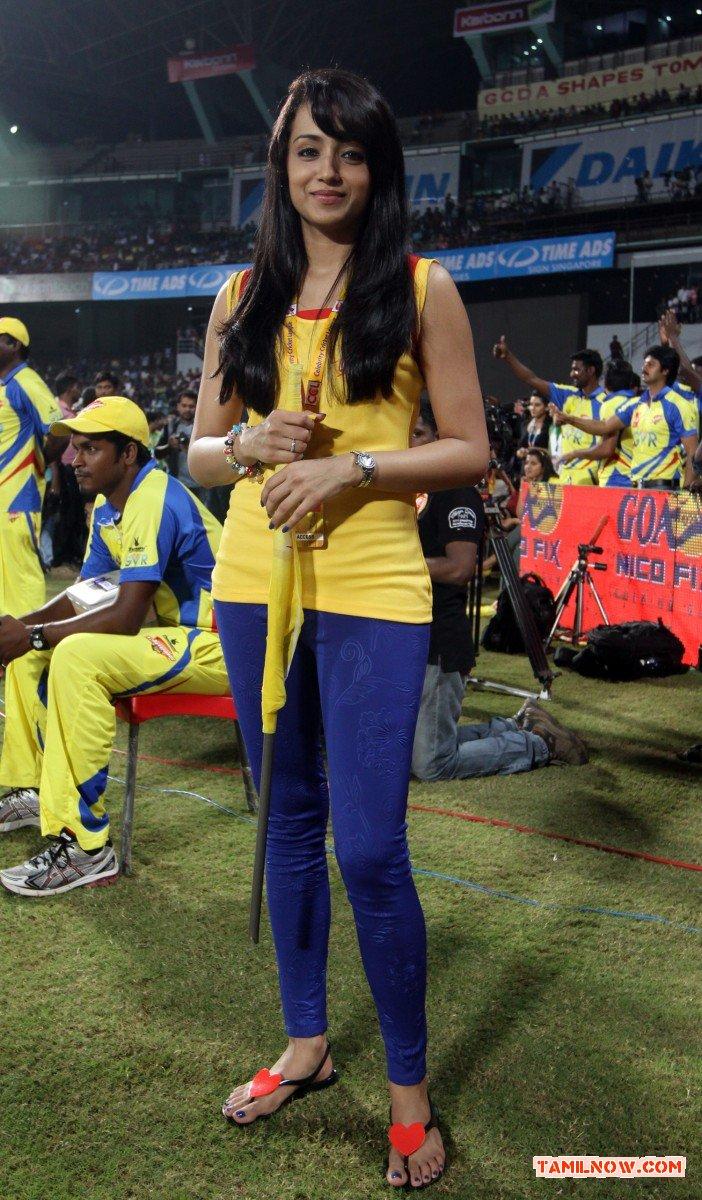 Trisha Krishnan Stills 3355