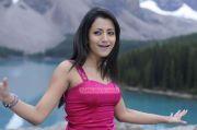 Trisha Krishnan Stills 4090