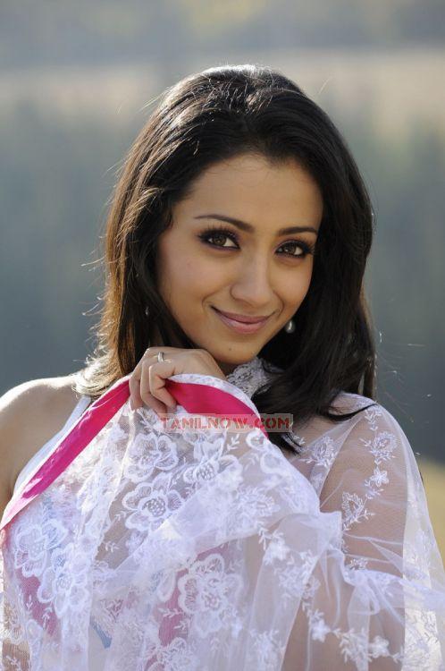 Trisha Krishnan Stills 4296