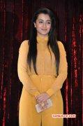 Trisha Krishnan Tamil Actress 2015 Albums 8942
