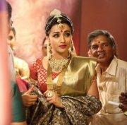 Trisha Krishnan Tamil Actress New Pics 4719