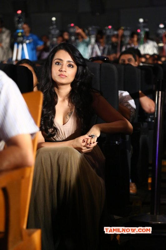 Trisha Krishnan Tamil Actress Oct 2015 Photos 142