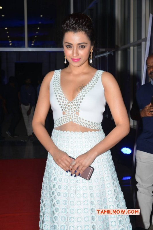 Trisha Krishnan Tamil Actress Recent Pic 5919