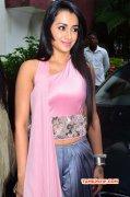 Trisha Krishnan Tamil Movie Actress Latest Stills 726