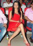Actress Trisha Krishnan 8821