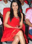 Trisha Krishnan 9498