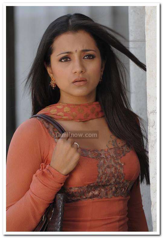trisha krishnan photo 256 tamil actress trisha photos