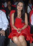 Trisha Krishnan Stills 223