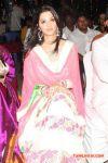 Actress Vedhika 8069