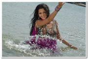 Actress Vedhika Photos 1