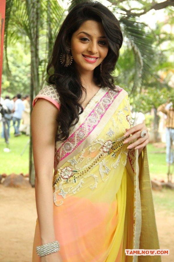 Actress Vedhika Photos 3506