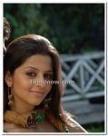 Actress Vedhika Photos 7