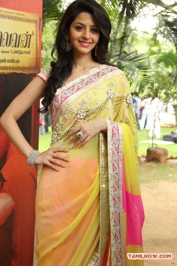 Tamil Actress Vedhika 6687