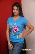 Aug 2015 Gallery Vidya Pradeep Movie Actress 3864