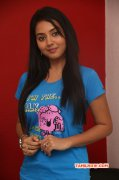 Recent Wallpaper Vidya Pradeep South Actress 8239