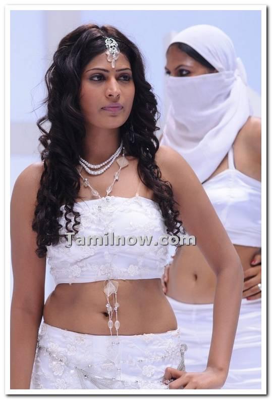 Vijayalakshmi Stills 03 - Tamil Actress Vijayalakshmi Photos