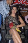 Actress Vimala Raman 1040