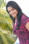 Actress Vimala Raman 3003