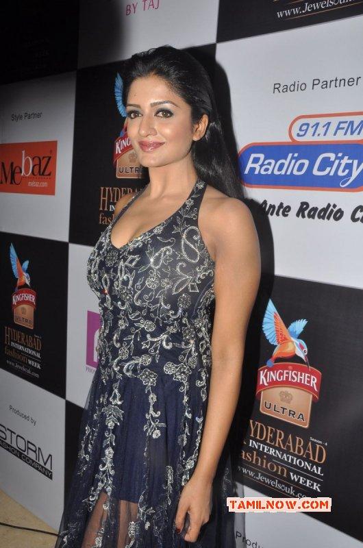 Albums Movie Actress Vimala Raman 5522