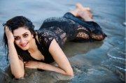 Latest Photos Vimala Raman Heroine 7868