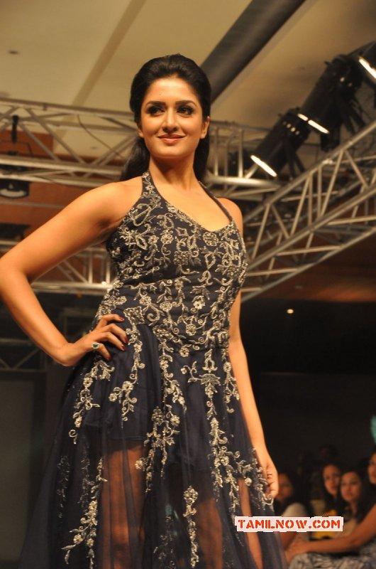 Latest Picture Indian Actress Vimala Raman 3463