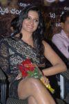 Vimala Raman Hot Hot Picture 597