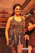Vimala Raman South Actress Recent Photos 7882