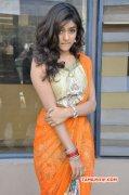 2015 Images Vithika Sheru 1100