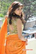 Film Actress Vithika Sheru Recent Wallpaper 2598