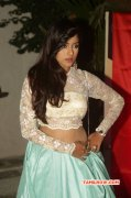 Recent Pictures Tamil Heroine Vithika Sheru 6026