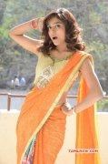 Vithika Sheru Indian Actress Latest Gallery 1663