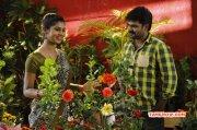 88 Tamil Cinema Recent Image 6073
