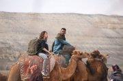 Vishal Tamannah In Action Photo 350
