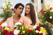 Siddharth Catherine Tresa Aruvam Movie New Photo 9