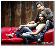 Surya Thamanna Photo 04