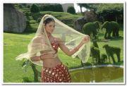 Deepa Chari Still 004