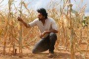 Jayam Ravi Bhoomi Movie Still 999