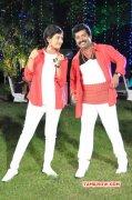 Tamil Film Ennodu Nee Irundhal 2016 Gallery 7999