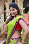 Anjali In Madha Gaja Raja 203